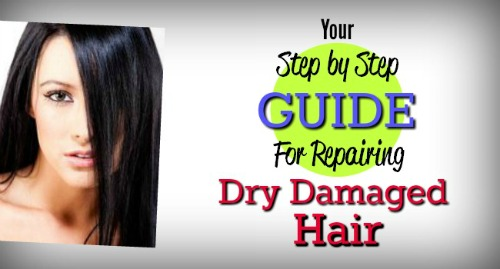 damaged-hair-repair-header