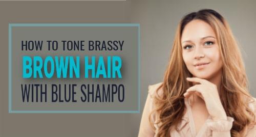 how to use blue shampoo
