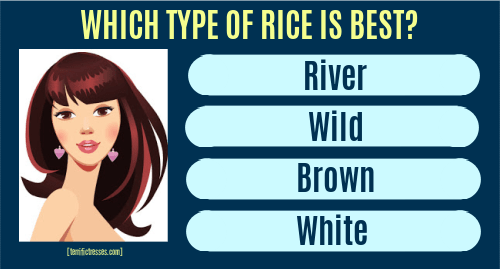 what kind of rice to use for fermented rice water